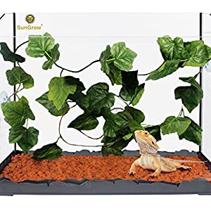 SunGrow Natural Looking Reptile Plants - Vibrant Green Terrarium Plastic Plants 6.5ft Easy to Clean Silk Leaves - Creates Natural Hiding Spot for Reptiles and Amphibians - Suction Cups Included 4