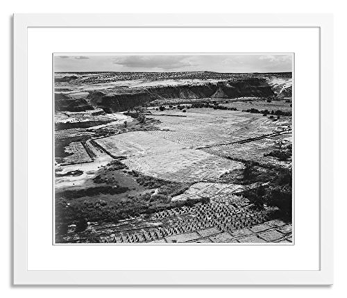 Gallery Direct Corn Field, Indian Farm near Tuba City, Arizona, In Rain, 1941 II Artwork on Paper by Ansel Adams with White, Clean and Simple Frame, 30