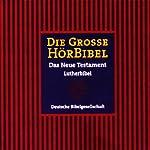 Die Große Hörbibel: Das Neue Testament | div.