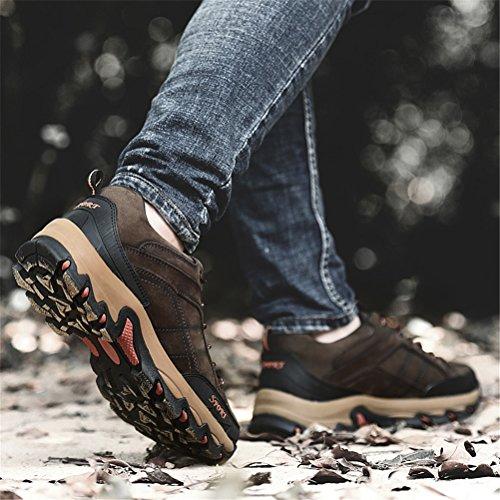 Chaussures Ailishabroy Marche Supérieures Marron Sport D'escalade Les Imperméabilisent Cuir Basses En Nubuck De qqr5UwaP