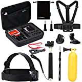 Luxebell 10 in 1 Value Pack Accessories Kit for Gopro Hd Hero 4 Session, Hero3+, Hero3, Hero2 & Hero+ Lcd, Head Strap + Chest Mount Harness + Handheld Monopod + Carry Case