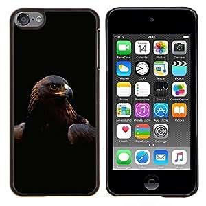 Caucho caso de Shell duro de la cubierta de accesorios de protección BY RAYDREAMMM - Apple iPod Touch 6 6th Touch6 - Majestic Eagle Hawk Aves