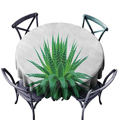 ScottDecor Overlay Round Tablecloth Jacquard Tablecloth Plant,Medicinal Aloe Vera with Vibrant Colors Indigenous Species Alternative Natural Remedy, Fern Green Diameter 36