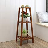 JZX Bamboo Frame, Multi-Layer Trapezoidal Plant Stand