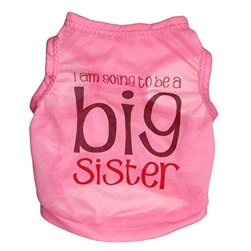 big sister shirt for dog - 7
