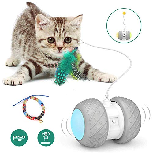Interactive Robotic Cat Toys,Automatic Irregular USB Charging 360 Degree Self Rotating Ball,Automatic Feathers/Birds/Mouse Toys for Cats/Kitten,Build-in Spinning Led Light,Large Capacity Battery 2