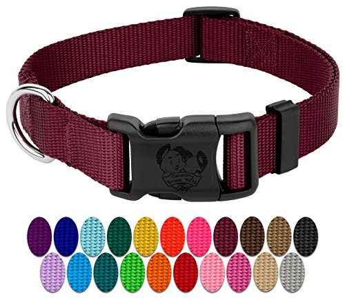 Country Brook Petz | Vibrant 23 Color Selection | Deluxe Nylon Dog Collar (Small, 3/4 Inch Wide)