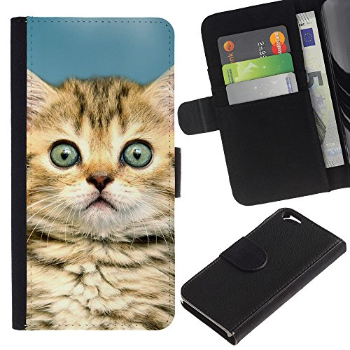 EuroCase - Apple Iphone 6 4.7 - kitten Maine coon house cat cute - Cuir PU Coverture Shell Armure Coque Coq Cas Etui Housse Case Cover
