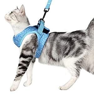 Dotoner Cat Harness and Leash Set Ultra-Light Kitten Collar Soft and Comfortable Cat Walking Jacket Running Cushioning escape proof Suitable for Puppies Rabbits with Cationic Fabric(L, blue)