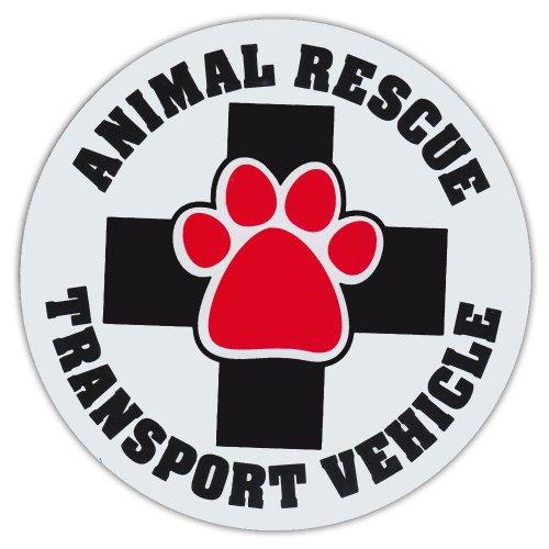 Animal Transport Vehicles - 4.75