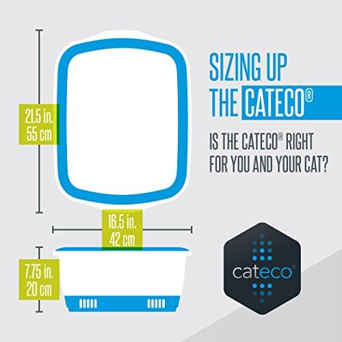 Résultats de recherche d'images pour «CATECO ORANGE»