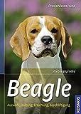Beagle: Auswahl, Haltung, Erziehung, Beschäftigung (Praxiswissen Hund)