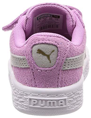 V Puma Classic Suede Inf Baby rvnnatXf