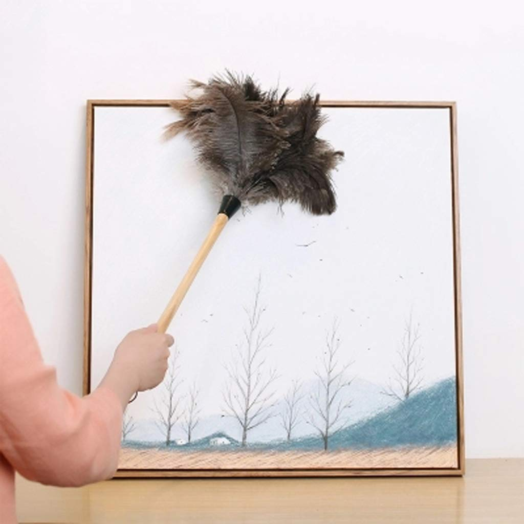 ZHANGY Hand Duster- Ostrich Feather Wood Handle, Spider Web Duster/Anti-Static car/Home Dust Dirt Cleaning Tool,B by ZHANGY (Image #3)