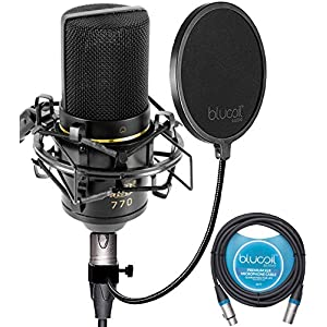 FiberTique Cleaning Cloth XLR Cable Mic Stand Mic Sanitizer MXL 770 Cardioid Condenser Microphone Kit with Pop Filter