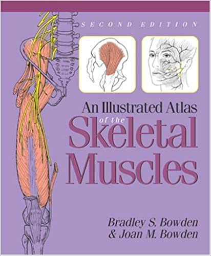Musculoskeletal Anatomy Coloring Book By Joseph E Muscolino : An illustrated atlas of the skeletal muscles: bradley s. bowden