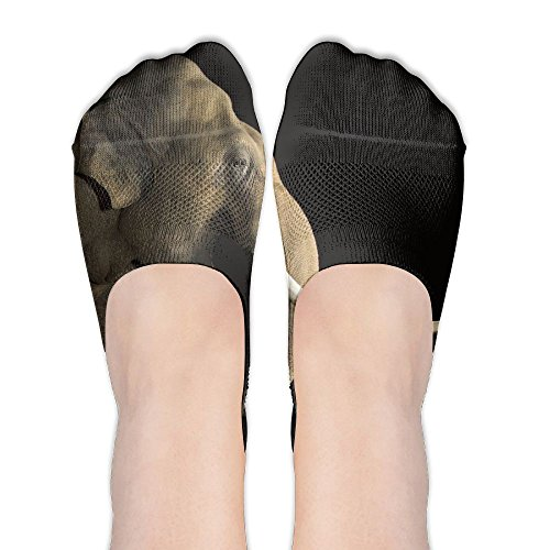 Low Cut Socks Asian Elephant Womens Casual No Show Socks Non Slip Flat Boat - Flat Face Asian