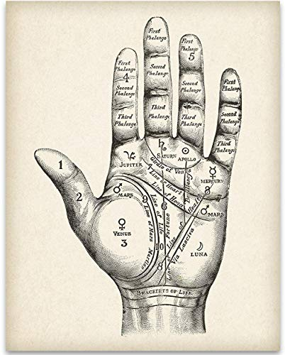 Vintage Palm Reading Chart - 11x14 Unframed Art Print - Great Gift for Fans of the Occult, Supernatural and Astrology, Also Makes a Great Gift Under $15 (Antique Palm Frame Art Print)