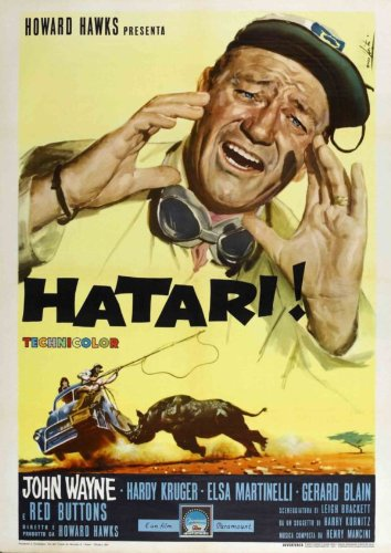 Filmcover Hatari!