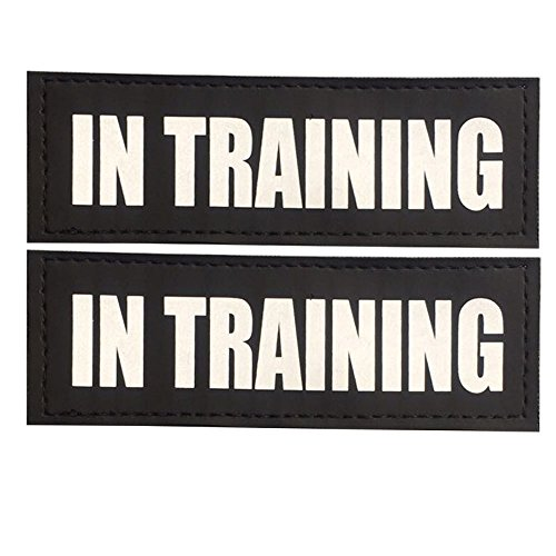 "UPC 713965169469, FAYOGOO Reflective In Training Patches with Hook Backing for Service Dog Vests /Harnesses. L, 6""x2"""