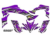 Senge Graphics All Years Kawasaki KFX 700, Shredder Purple Graphics Kit