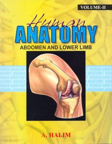 Human Anatomy Ii- Abdomen And Lower Limb