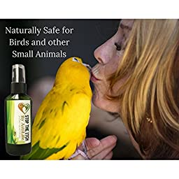 Pets Best Natural Remedy for Hot Spots, Eczema, Itchy, Flaky Skin, Stop the Itch by AstiLife the Pet Insurance you want, A Safe Rash Guard that Reduces Inflammation. Make it a part of Pet Grooming