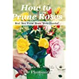 """How To Prune Roses """"Real Men Prune Roses Bare Handed"""""""