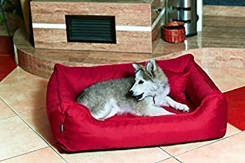 Cama para perro DONALD ORTO Vital Anti-pelo 120cm XL rojo vino bordeaux Revestimiento de teflón con Colchón de confort: Amazon.es: Productos para mascotas