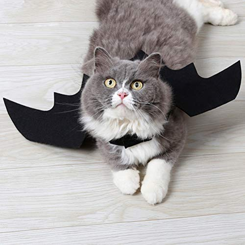 Amazon.com : UEETEK Halloween Pet Cat Bat Wings, Funny Cat Bat Costume, Bat Wings Pet Costume for Puppy Kitty Festival Party Cosplay Clothes (Black) : Pet ...
