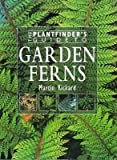 The Plantfinder's Guide to Garden Ferns