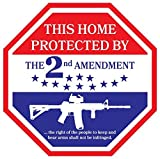 This Home Protected By The 2nd Amendment Vinyl Decal Sticker|Car Truck Van Wall Laptop|FULL COLOR|5 In|KCD703
