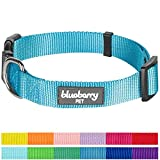 "Blueberry Pet 12 Colors Classic Dog Collar, Medium Turquoise, Small, Neck 12""-16"", Nylon Collars for Dogs"