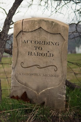 According to Harold: A Ghostly Memoir by CreateSpace Independent Publishing Platform