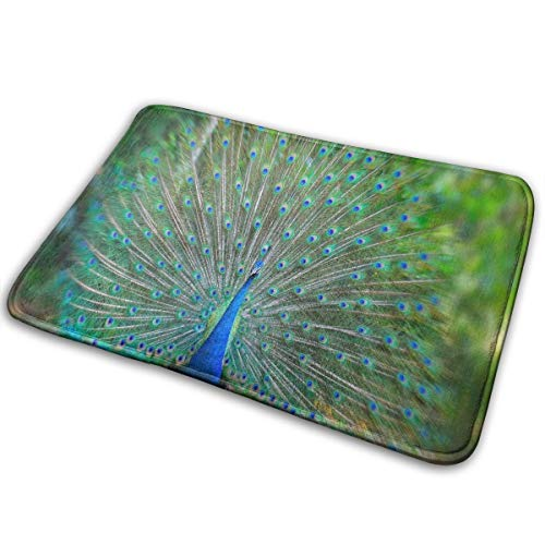 FunnyCustom Doormat Peacock - Dream Meaning Marvellous Non Slip Water Absorption Bathroom Mats for Home