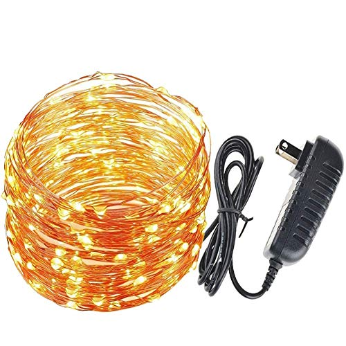 LED String Lights 99ft 300 LEDs Fairy String Lights,IP44 Waterproof? UL Aadapter, Warm White (99ft DC plug)