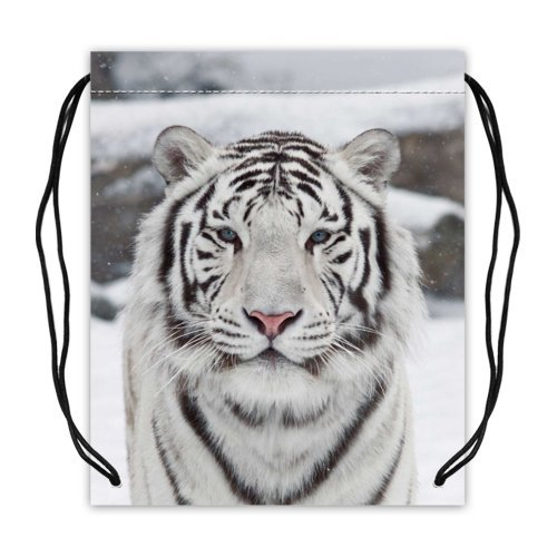 Cool Tigerバスケットボール巾着バッグバックパック、スポーツ機器バッグ – 16.5