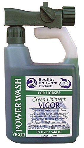 healthy-haircare-product-vigor-liniment-power-wash