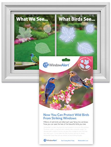 Amazoncom GC Window Alert Leaf Medley Window Decal Screen Saver - Window alert decals amazon