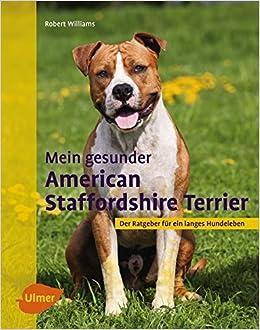 Mein Gesunder American Staffordshire Terrier Der Ratgeber Fur Ein