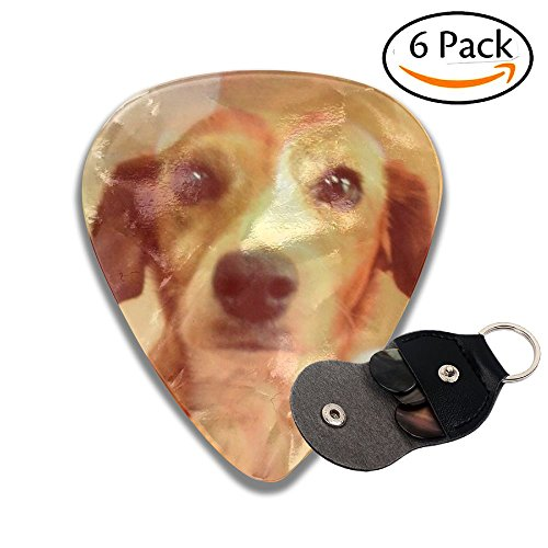 Stylish Colorful Celluloid Guitar Pick 6 Pack Includes Thin, Medium & Heavy Gauges Dog