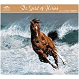 2018 Lesley Harrison The Spirit of Horses Wall Calendar (AMCAL)