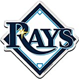 Tampa Bay Devil Rays MLB Precision Cut Magnet by Wincraft