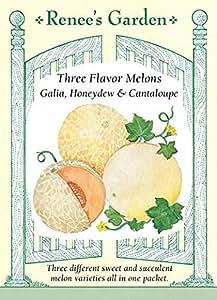 Melons - Three Flavor Blend Seeds