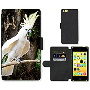 Super Stella Cell Phone Card Slot PU Leather Wallet Case // M00146364 Parrot White Twitter Forest Animal // Apple iPhone 5C