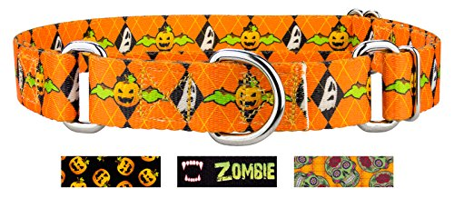 Country Brook DesignWhen Pumpkins Fly Martingale Dog Collar - Large