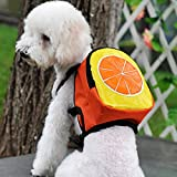 TiTa-Dong Mini Cute Dog Backpack Pet Breathable Cartoon Cash Bag For Outdoor Travel Orange