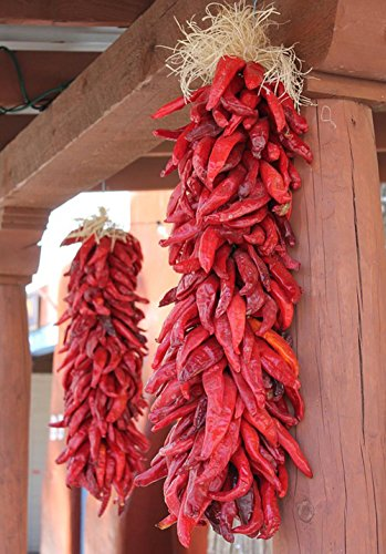 (LAMINATED 24x34 inches POSTER: New Mexico Albuquerque Tourism Tradition Ethnic Chile Ristra Chili Ristra Red Decorations Holiday Decorative New Mexican Food Cooking Spice Southwestern Food )
