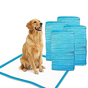 Gardner Pet Super-Absorbent 24 by 24 Inches Dog Training Pads – 100 Count of Pads