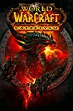 World of Warcraft Cataclysm Deathwing Dragon Blizzard Video Game Poster 24 x 36 inches